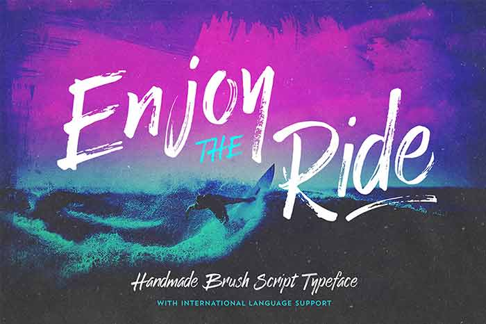 Enjoy the Ride Brush Script font from Vintage Design Co. is 1 of 20 professional fonts you can get for just $29!