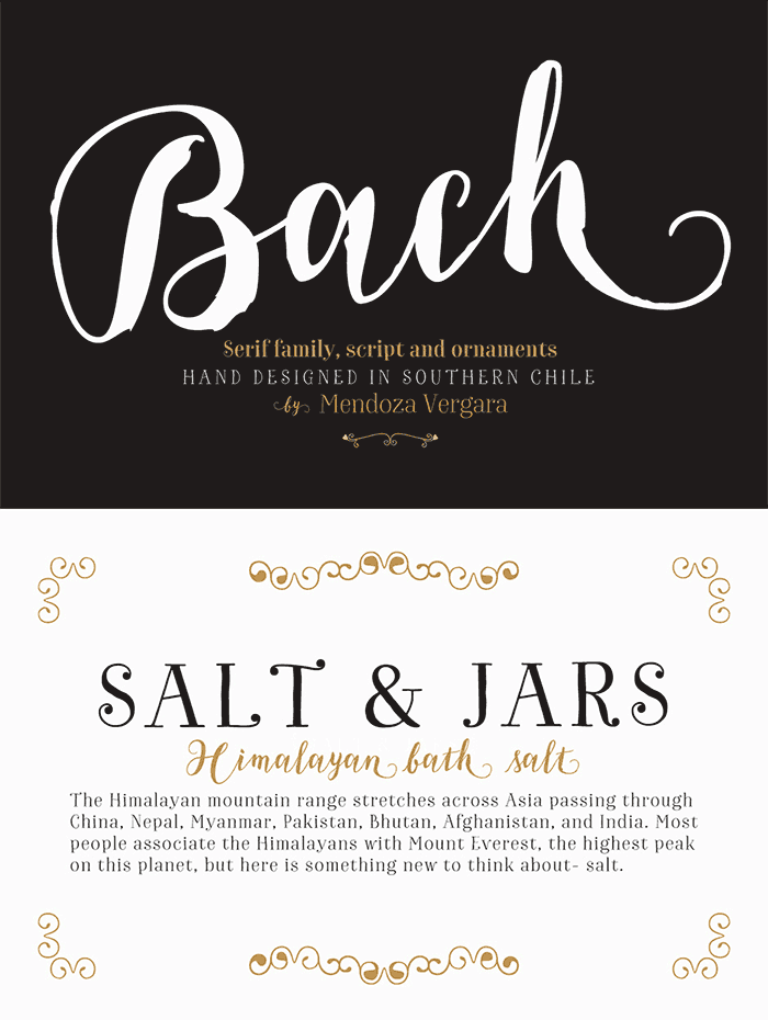 Bach Complete Family by Los Andes Type. This family of fonts includes this beautiful brush script and also a few hand-drawn fonts . See more ideas for feminine fonts for your blog in 2016.