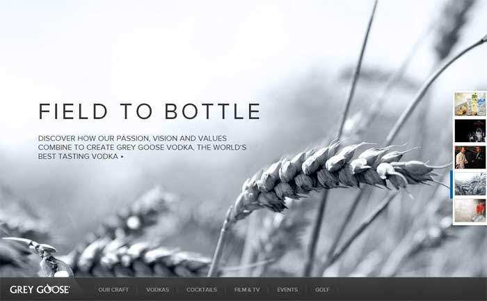 Case study on Responsive Web Design site, Grey Goose