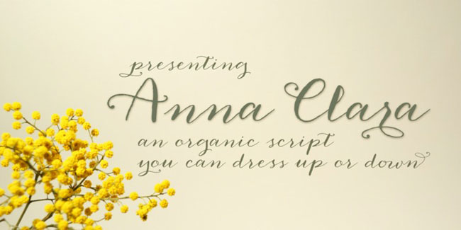 Anna Clara, a hand-written Calligraphy font. See more at http://DesignYourOwnBlog.com