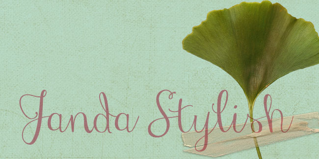 Janda Stylish, a hand-written Calligraphy font. See more at http://DesignYourOwnBlog.com